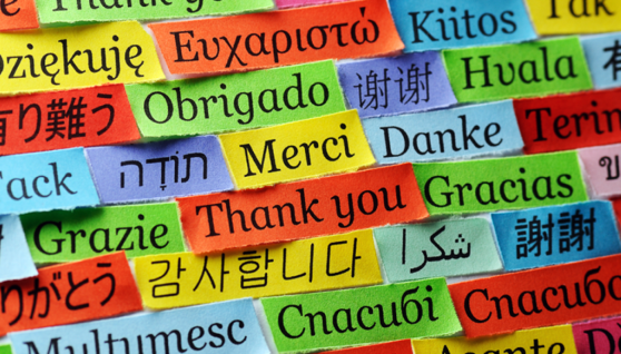 4 Tips to Select Translation Services to Transform a Business Website