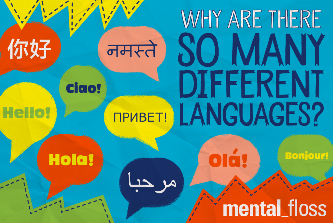 Why To Get Professional Farsi Translation Services By Experts Now?